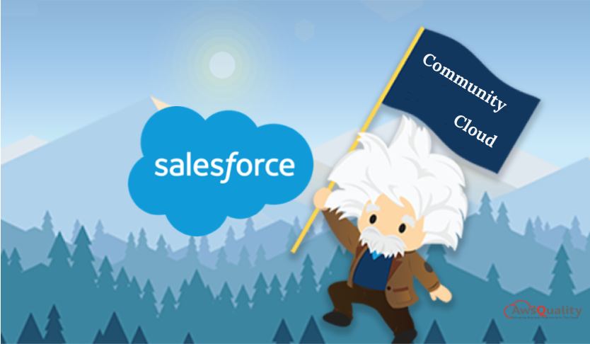 salesforce community cloud