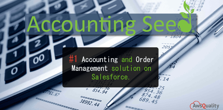 Accounting Seed (Tracks Financial Data Through The Entire Business)