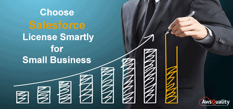 Choose Salesforce License Smartly for Small Business