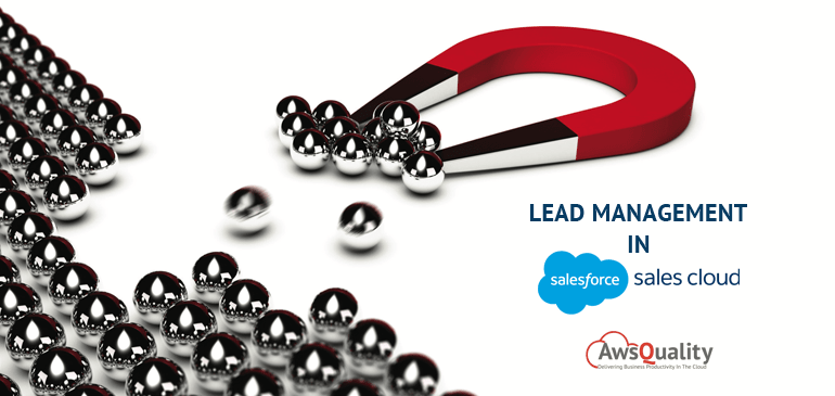 lead management in sales cloud