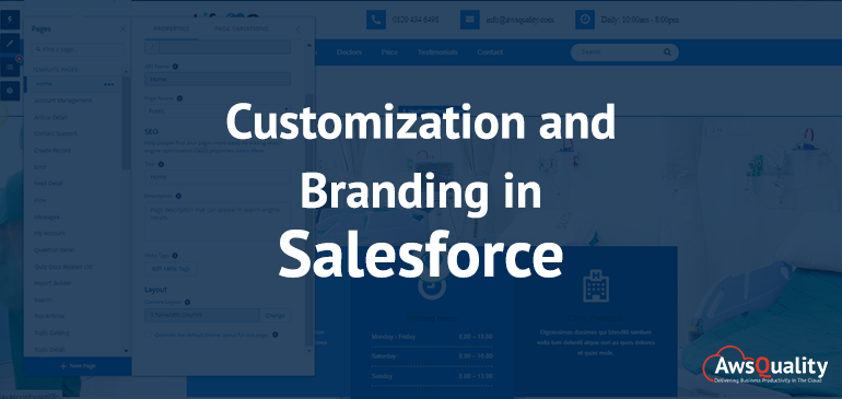 custom branding in salesforce